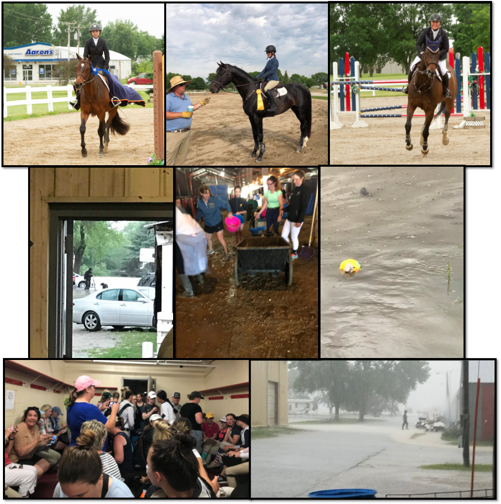MSHS Collage Spring 2 - 6.11.18